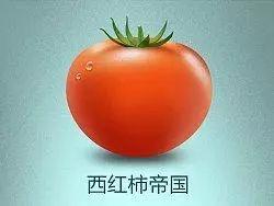 详细介绍意大利番茄&番茄酱知识 意国杂烩 第2张