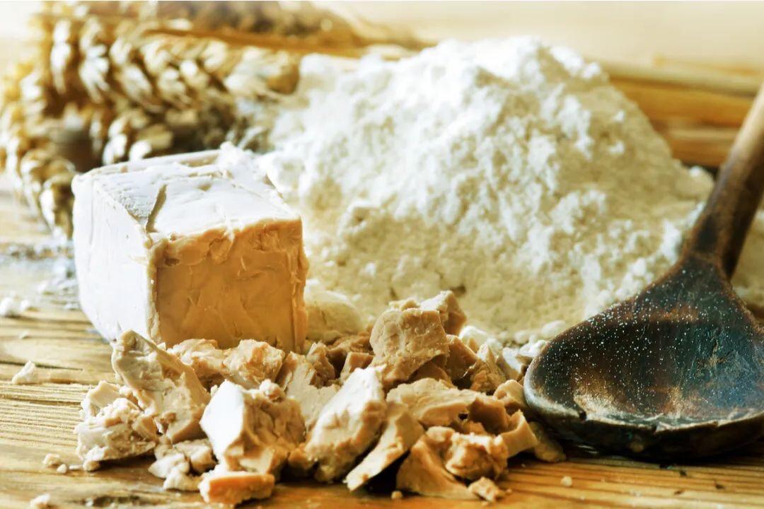 词汇篇- 超市里的《发酵粉》你会选了吗? 意语学习 第9张